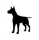 Hund Silouette