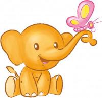 Hipp Elefant Schmetterling
