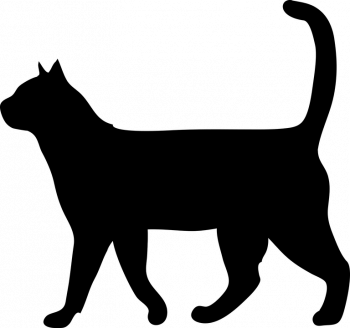 schwarze Katze animiert
