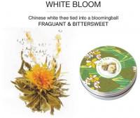 """""""Weiße Blüte"""", 50g Dose, weißer Tee aromatisiert mit Jasmin-Blüten"""