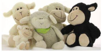 Schafi Gruppenbild