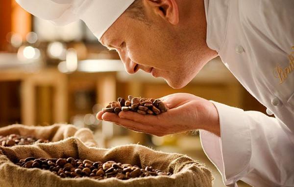 Sentir les fèves de cacao Lindt